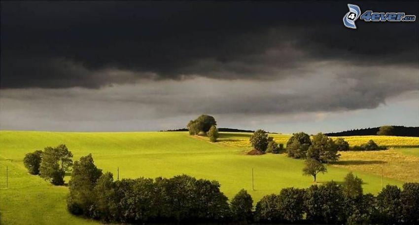 ciemne chmury, łąka, drzewa, burza