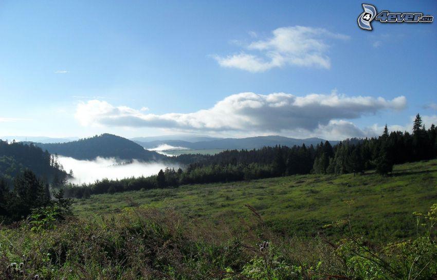 dolina, mgła, panorama, niebo