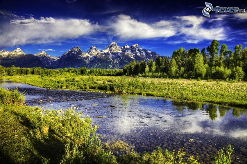 Grand Teton, Park Narodowy, strumyk, drzewa, zaśnieżone góry