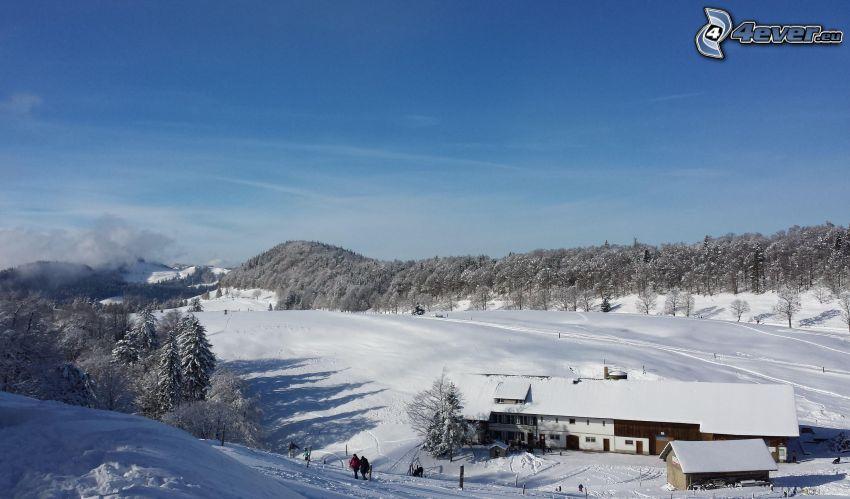 hotel, ośnieżone drzewa, śnieg
