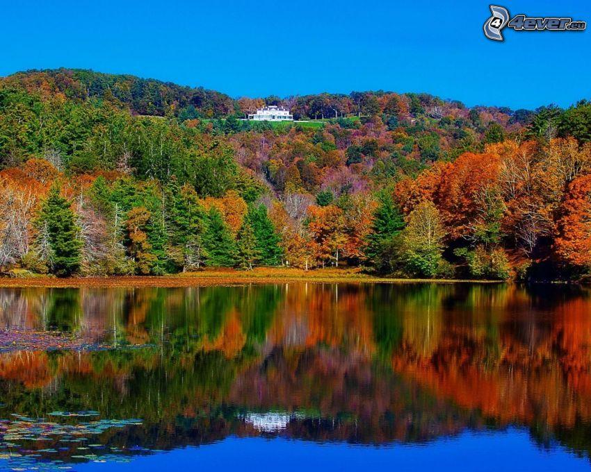 jezioro, kolorowe drzewa, dom na wzgórzu, odbicie