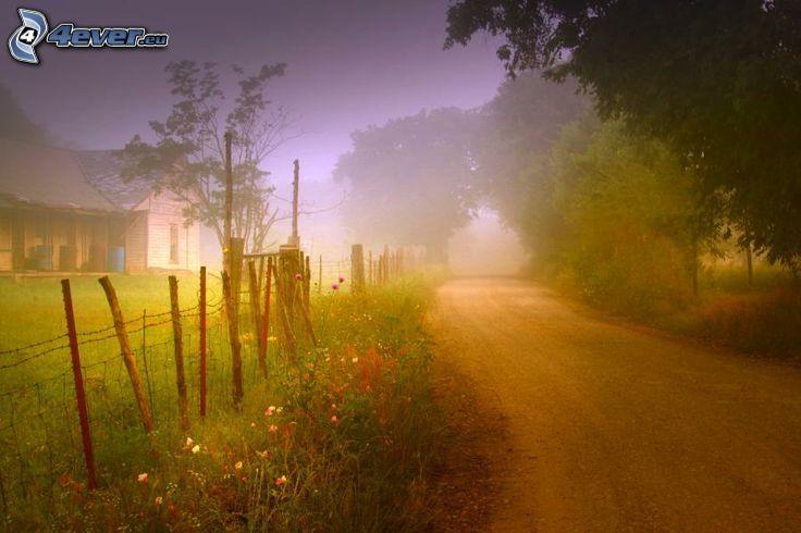 mglisty poranek, ulica, płot, dom