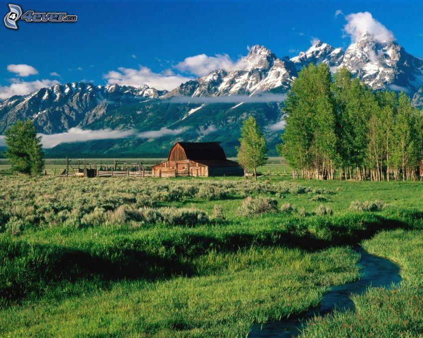 Moulton Ranch, amerykańska farma, Grand Teton, Park Narodowy, góry, drzewa liściaste, krajobraz, strumyk