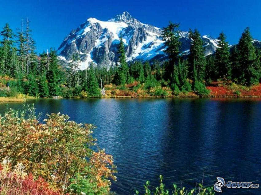 Mount Baker, Snoqualmie National Forest, zaśniżona góra nad jeziorem, drzewa