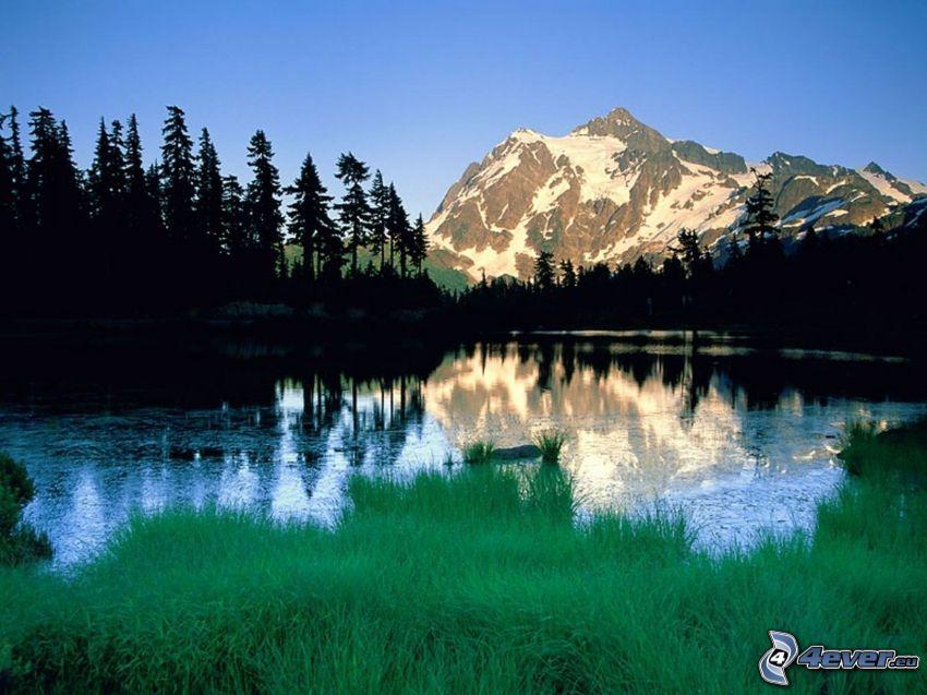 Mount Shuksan, zaśniżona góra nad jeziorem, wzgórze, drzewa iglaste, sylwetki drzew, zielona trawa