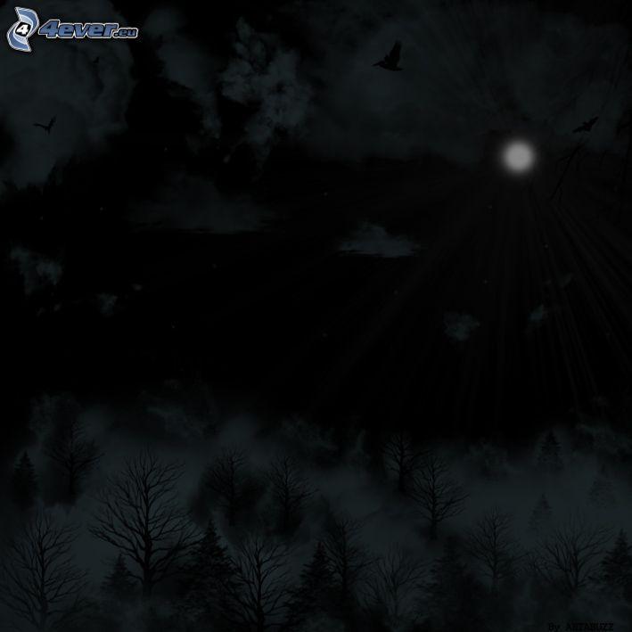 noc, ciemność, księżyc, drzewa, chmury