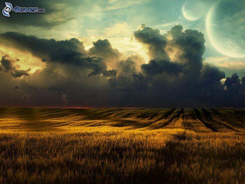 pole ze zbożem, chmury, miesiące, fantastyczne