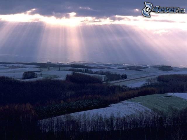 promienie słoneczne, chmury, las, łąki