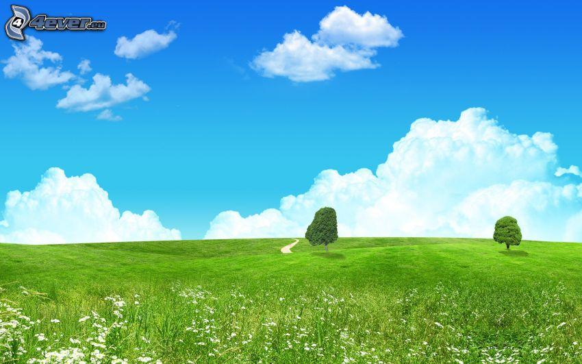 samotne drzewa, zielona łąka, chmury