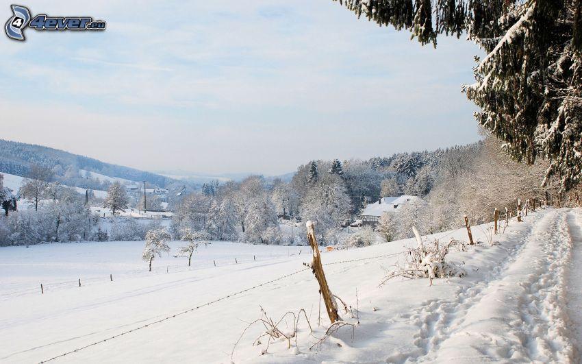 śnieżny krajobraz, drut kolczasty, ślady w śniegu