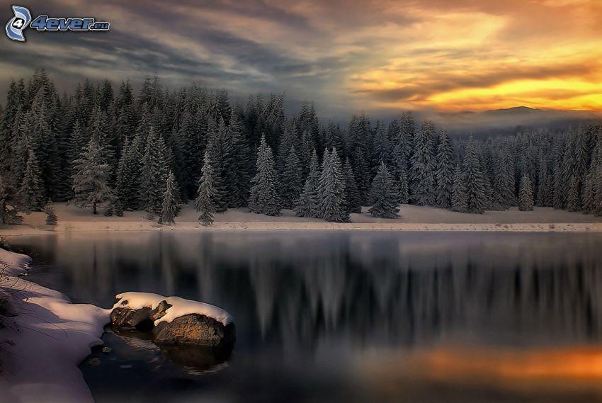 spokojne jezioro zimą, las, zachód słońca