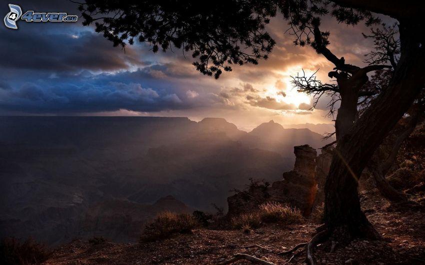 widok na krajobraz, drzewo, promienie słońca za chmurami, wzgórza
