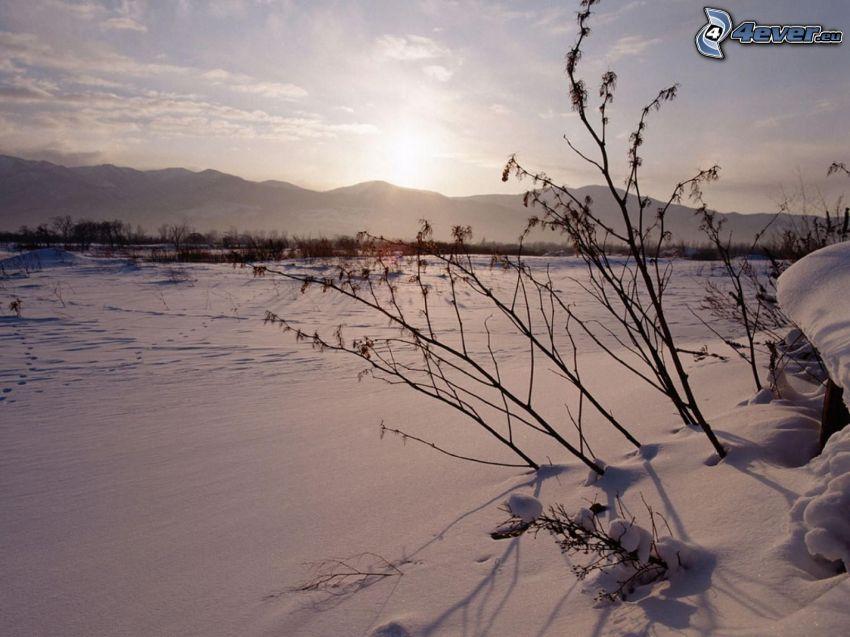 wschód słońca w zimie, zaśnieżone pola