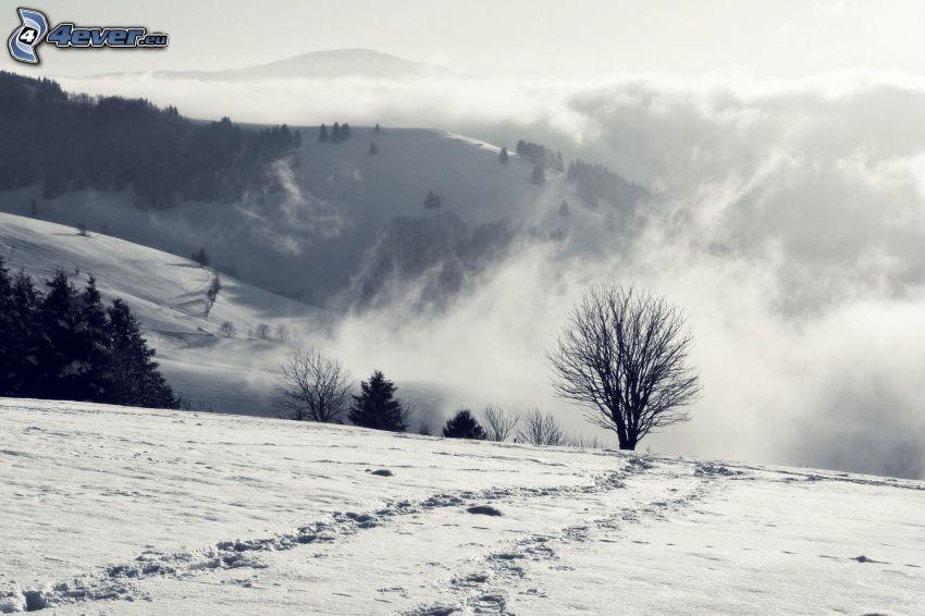 wzgórza, ślady w śniegu, chmury, czarno-białe