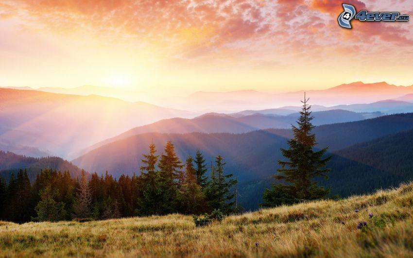 zachód słońca nad górami, pasmo górskie, promienie słoneczne, las iglasty, łąka, niebo