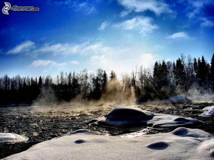 las, śnieg, niebo, promienie słoneczne