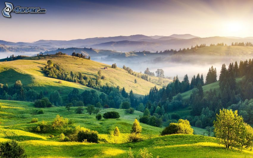 lasy i łąki, przyziemna mgła, pasmo górskie