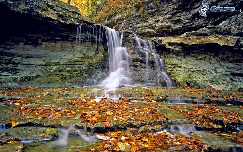 leśny wodospad, skały, opadnięte liście, HDR