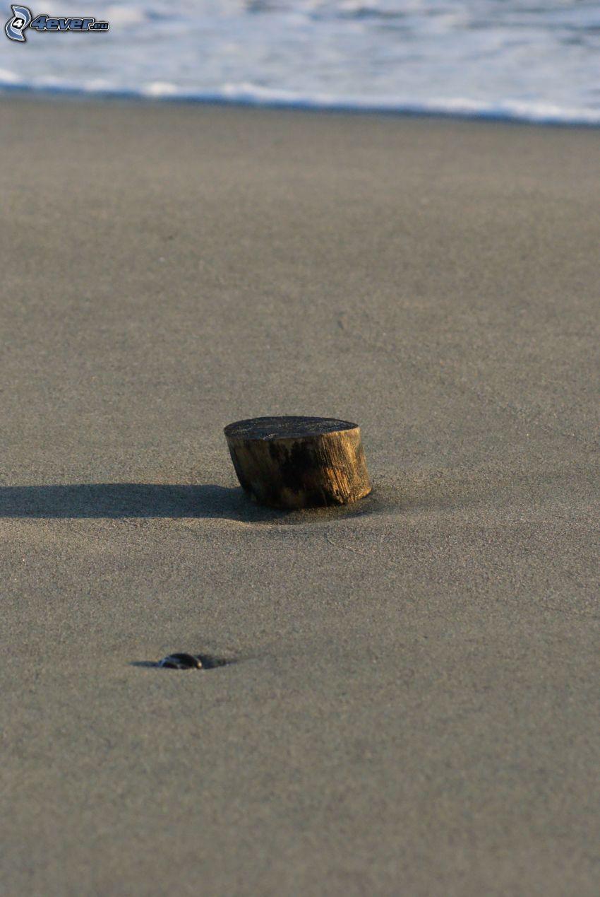 drewno, plaża piaszczysta, morze