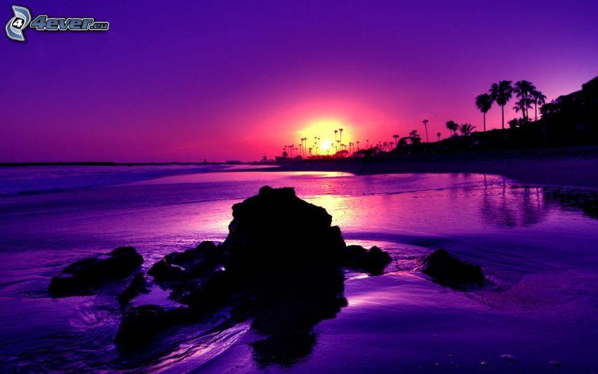 fioletowy zachód słońca, wybrzeże, skały, morze, ocean