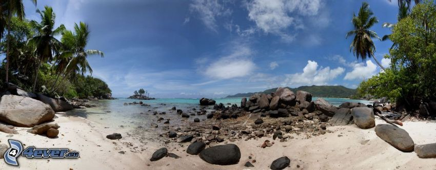 kamieniste nadbrzeże, palmy nad morzem, piasek