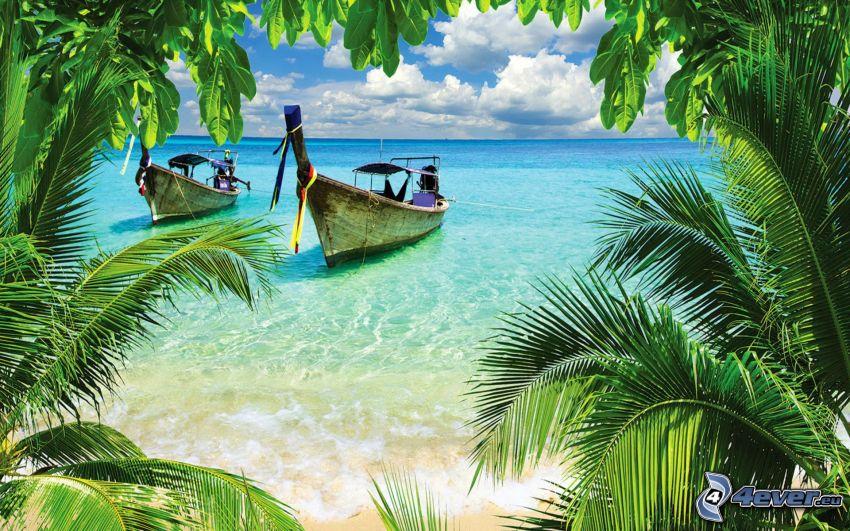 łódź na morzu, palmy, morze otwarte