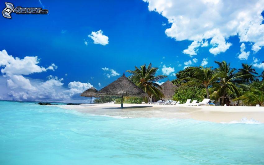 Malediwy, morze, palmy, parasol przeciwsłoneczny, chmury