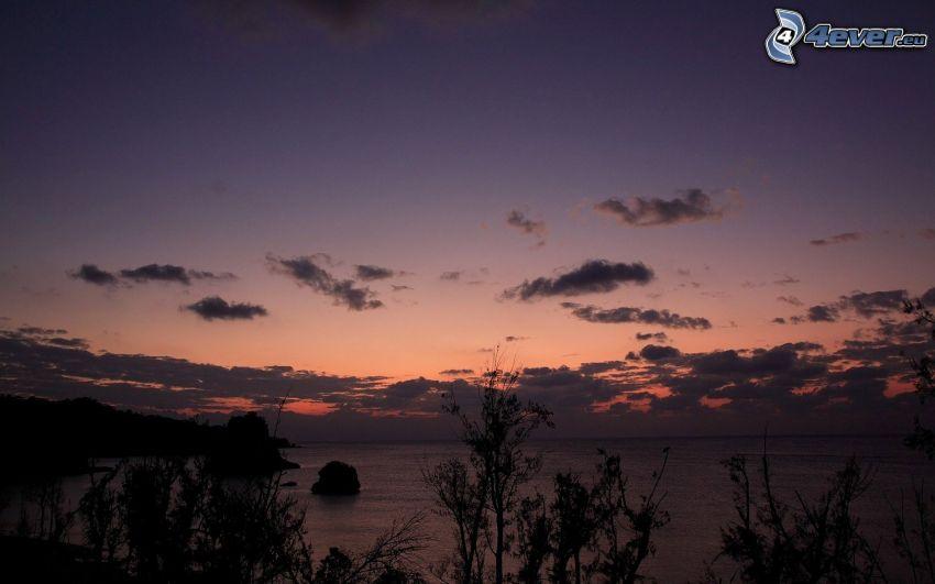 morze, niebo o zmroku, sylwetki drzew