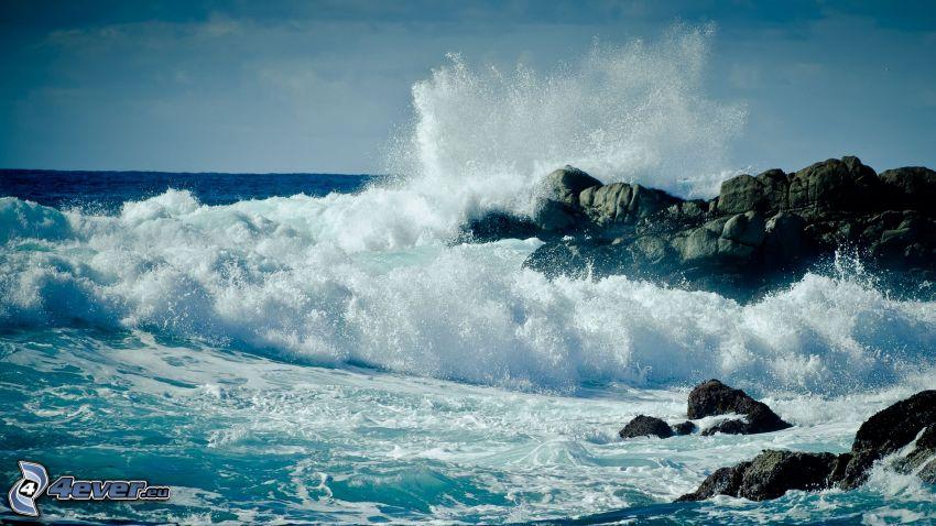 morze, skalisty brzeg