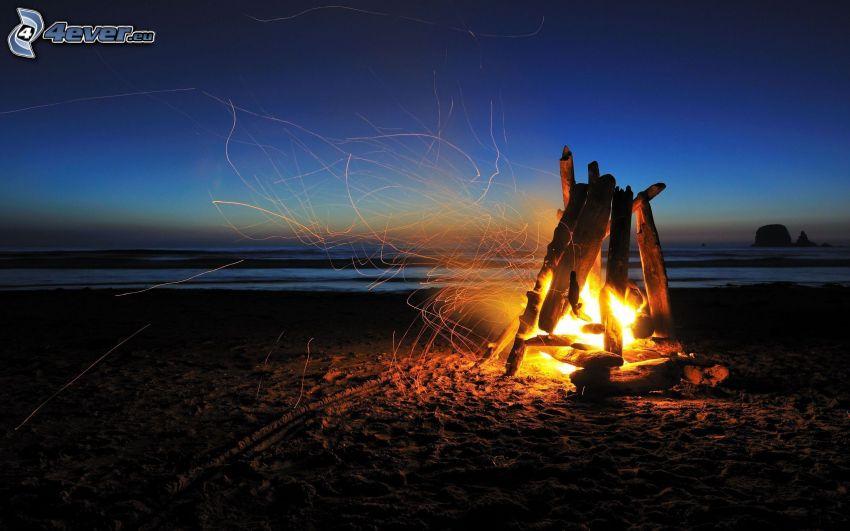 ogień, plaża piaszczysta, wieczór