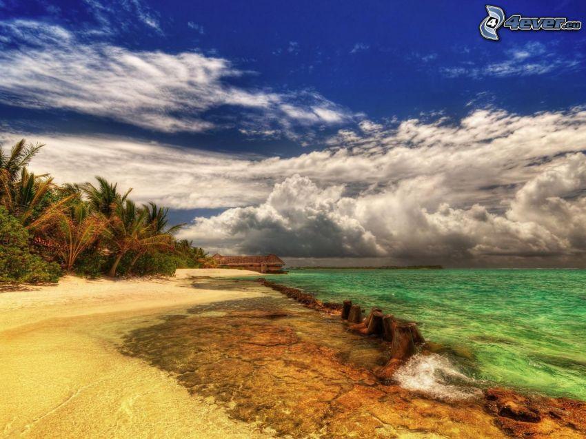 plaża, morze, dom przy morzu, chmury, palmy