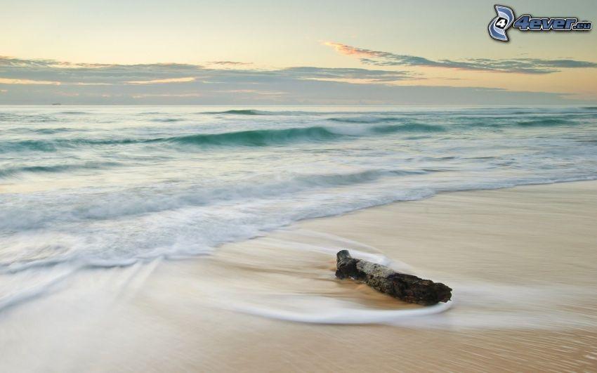 plaża, morze, drewno
