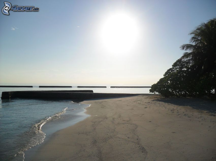 plaża na Malediwach, słońce