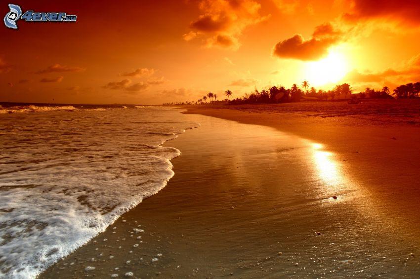 plaża o zachodzie słońca, plaża piaszczysta, pomarańczowe niebo