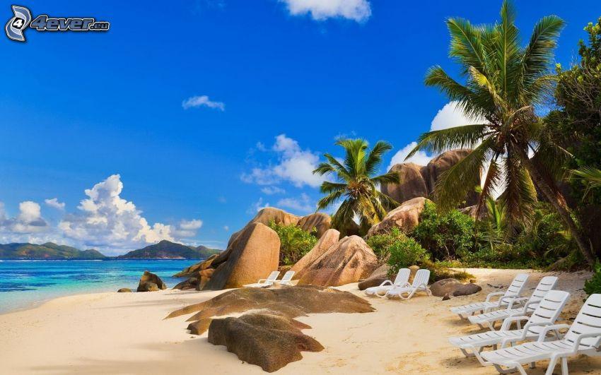 plaża piaszczysta, głazy, leżaki, palmy, morze