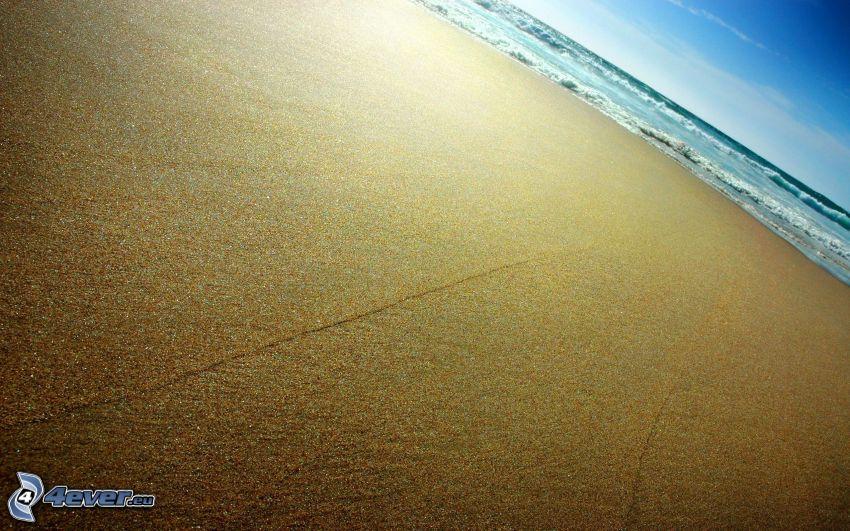 plaża piaszczysta, morze