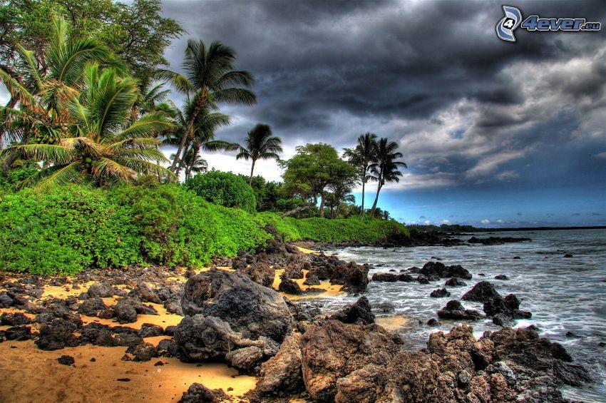 plaża skalista, wyspa, palmy, zieleń, morze, chmury, HDR