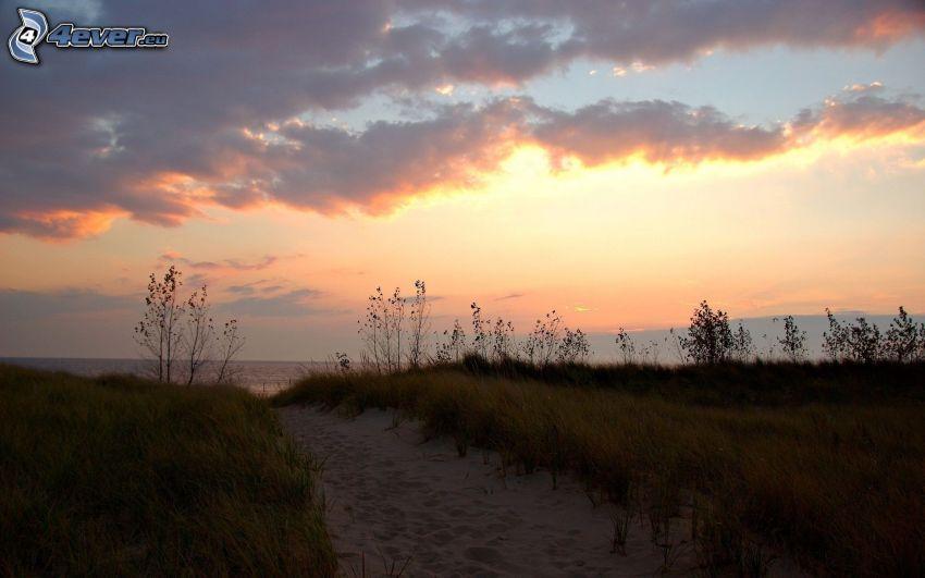 ścieżka, łąka, morze, niebo o zmroku