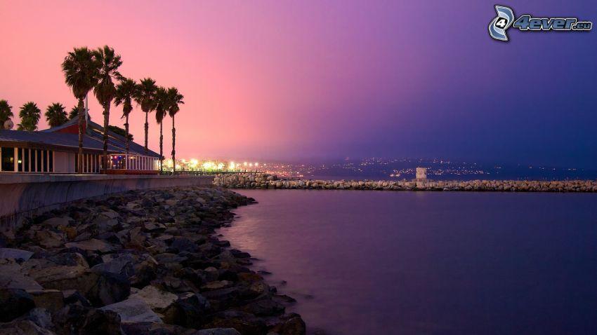 skalisty brzeg, morze, dom, palmy, fioletowe niebo