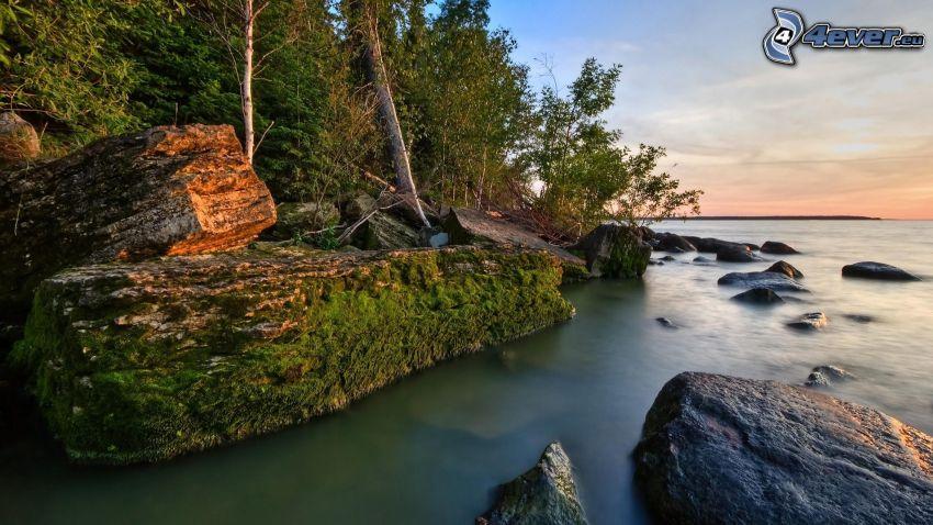 skalisty brzeg, morze, kamienie, zieleń