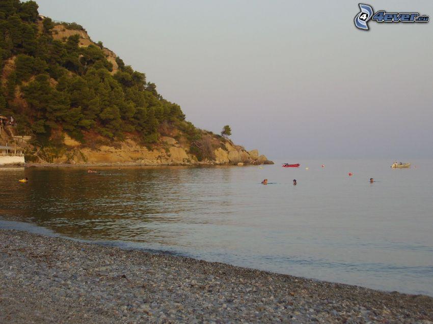 skalisty brzeg, plaża, morze, woda, drzewa