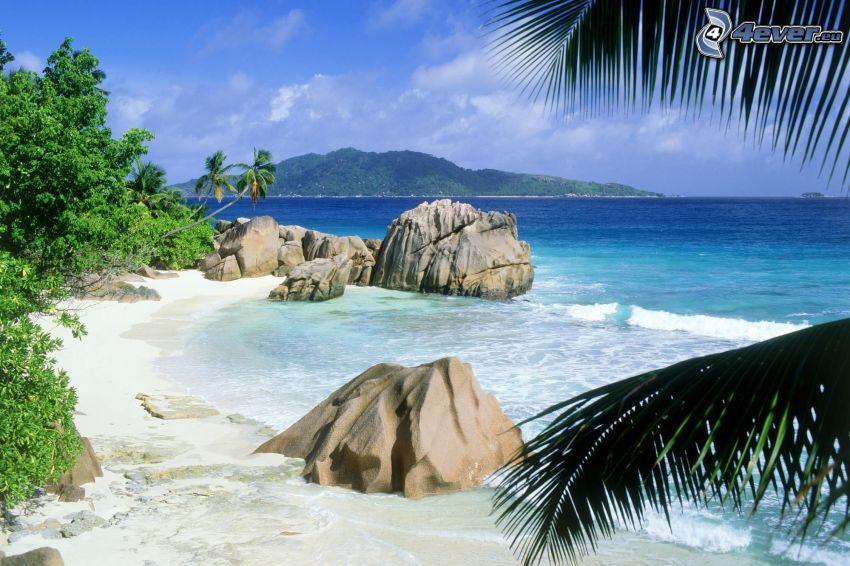 Skały na morzu, plaża, liść palmowy, wyspa