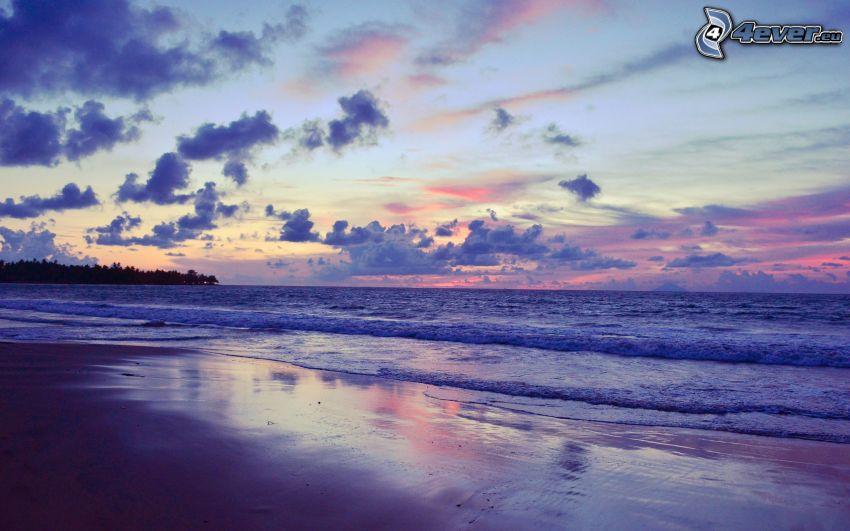 wieczorna, plaża, morze, niebo o zmroku