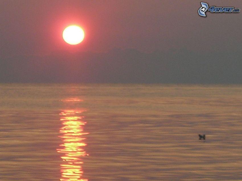 wschód słońca na powierzchni morza