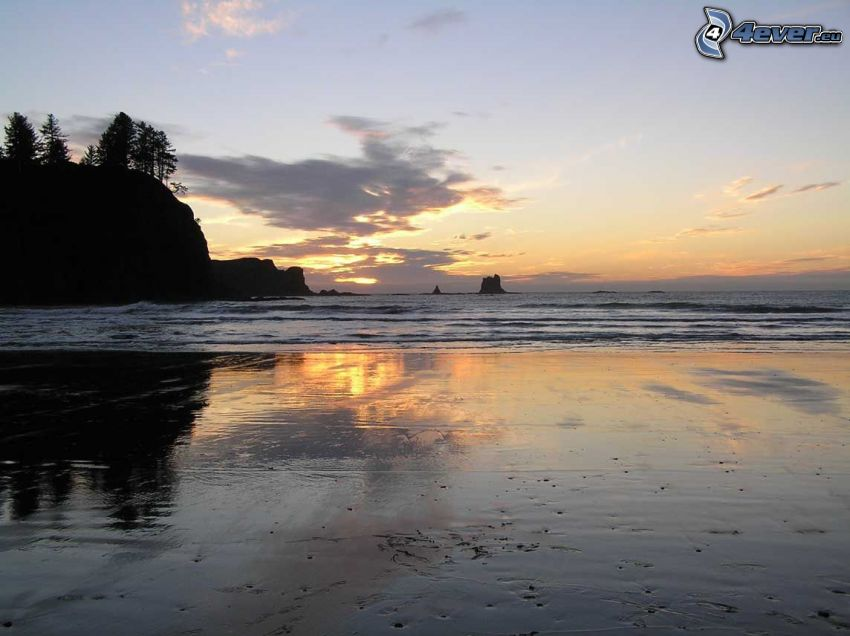 wybrzeże o zachodzie słońca, plaża, morze, wzgórze, sylwetki drzew