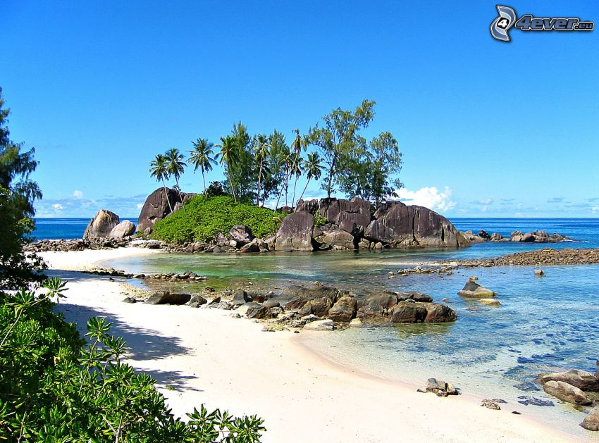 wyspa, kamieniste nadbrzeże, morze, palmy