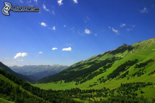 Poľana, przyroda, góry, dolina