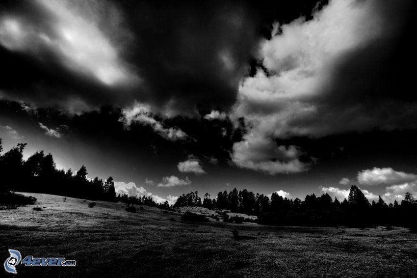 nocny krajobraz, chmury, las, ciemność