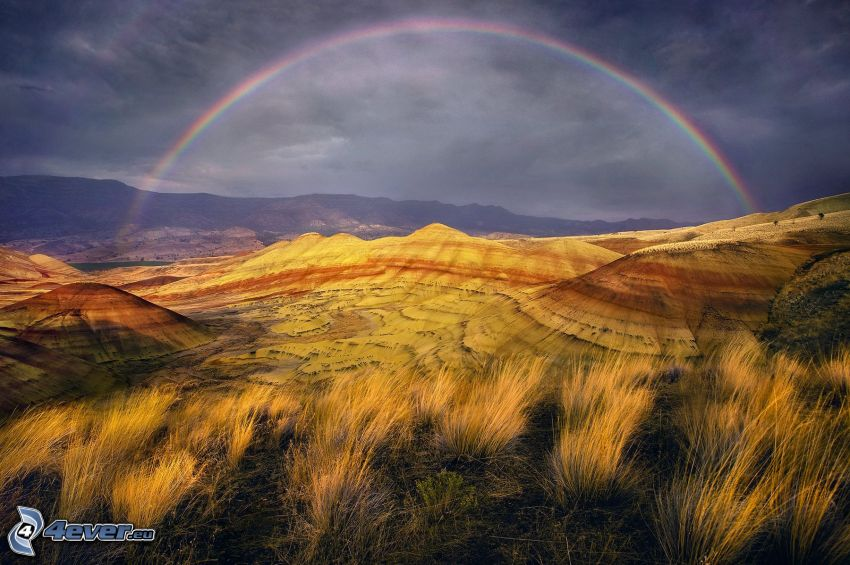 Painted Hills, źdźbła trawy, tęcza, Oregon, USA