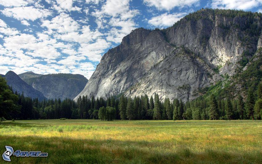 Park Narodowy Yosemite, góry skaliste, łąka, las, chmury